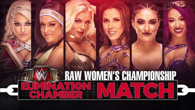 Image result for women's elimination chamber match